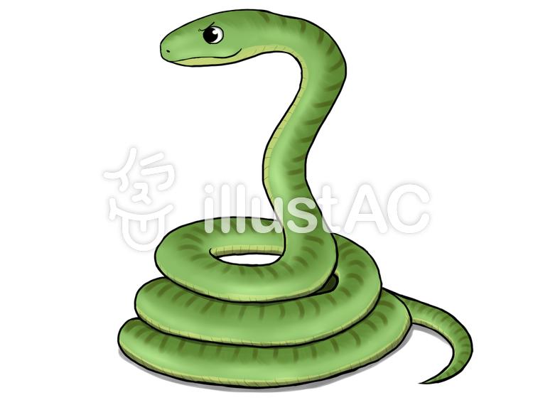 蛇2イラスト , No 35256/無料イラストなら「イラストAC」