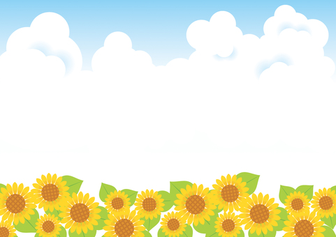 Sunflower and blue sky background 04