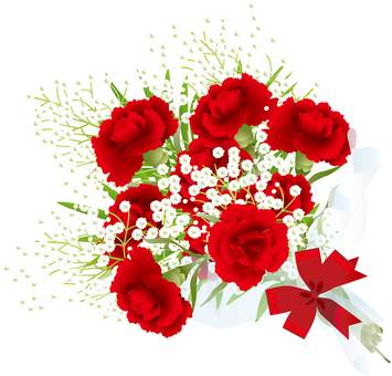 카네이션 먹풀 꽃다발 7