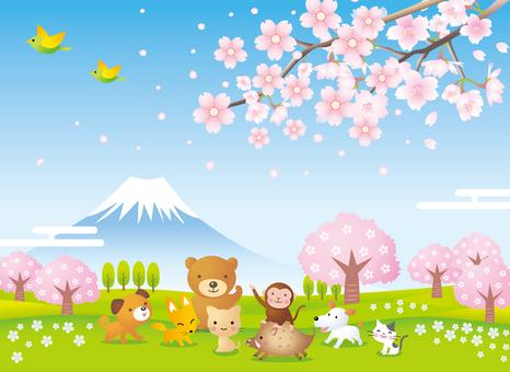 Animals under cherry blossoms