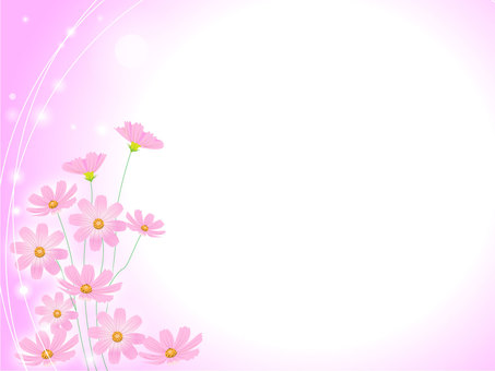 Background (Cosmos Pink)
