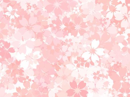 Sakura background ver18