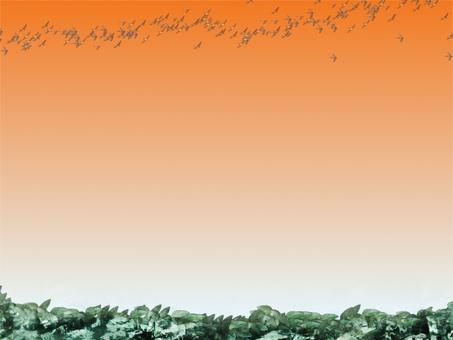 Sunset migratory birds