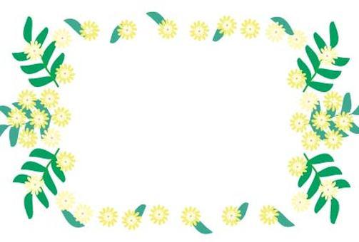 노란색 미모사 아카시아 꽃의 프레임 프레임