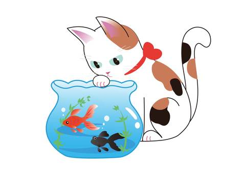 Cat and Fishbowl 2