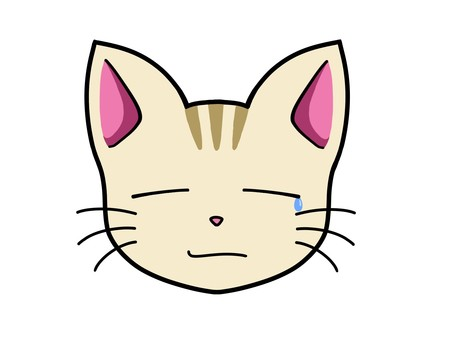 Cat character 1_ sad face