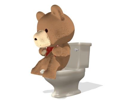 Teddy bear · toilet