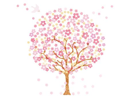Big cherry tree 5