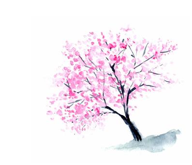 Sakura tree ink painting style