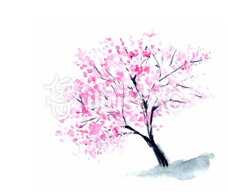 桜の木 墨絵風イラスト No 1004520無料イラストならイラストac