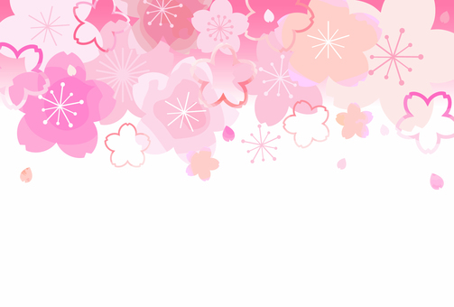 Cherry blossom background 02