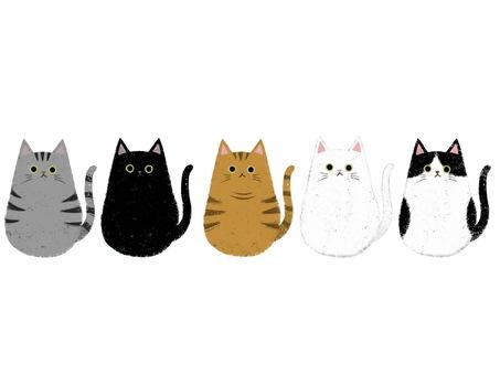 Cat cats large set (no background)