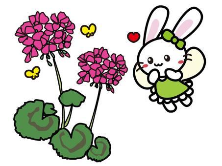 Aroma Usago (geranium)