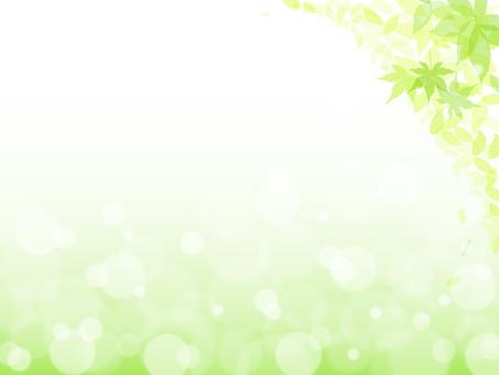 新緑_背景3