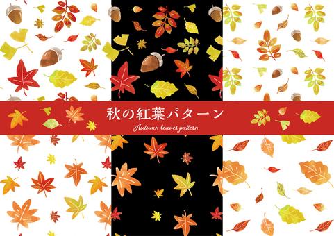 秋の紅葉パターン