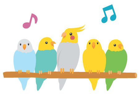 Five parrots to sing on perch