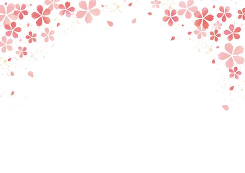 벚꽃의 프레임 3