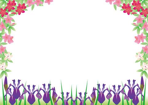 Frame of azalea flowers