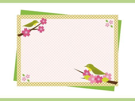 Cherry Blossom Frame (Green)