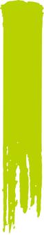 Brush short a_ short _ Meng yellow _cs