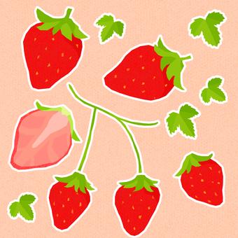 봄의 휘어있는 딸기 2