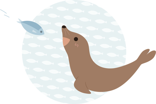 Sea lion _ fish