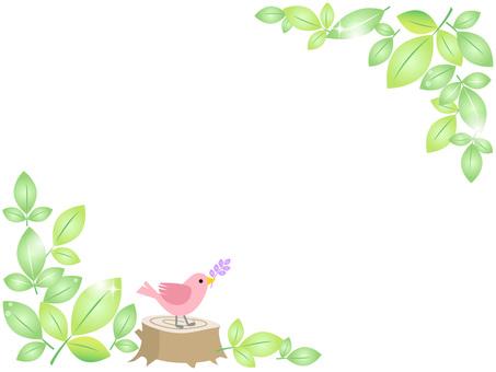 70413, fresh green and birds