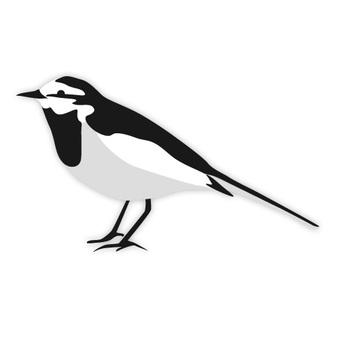 Famous birds (familiar birds)