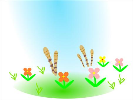 Tsukushi向外望去是春天