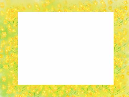 Rape flower square frame