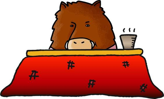 The boar that is in the kotatsu