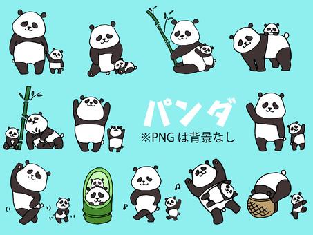 各种姿势的父母和小熊猫(熊猫9)