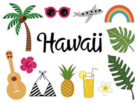 Fashionable Hawaiian illustration set various