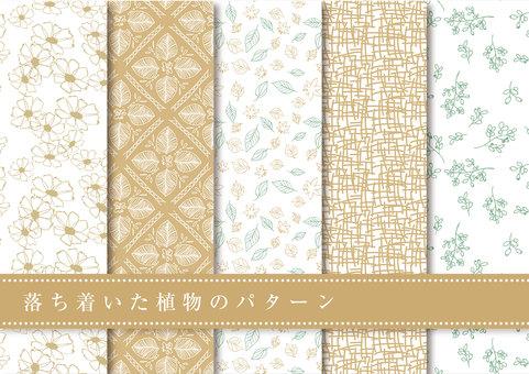 패턴 세트 011 차분한 식물