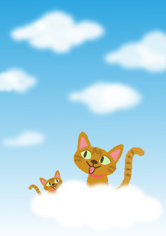 cat_ blue sky and cat 1