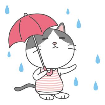Hachiware Cat Rain