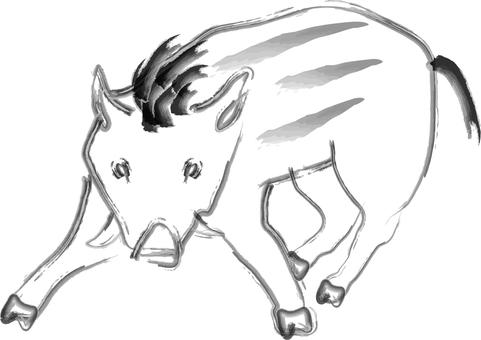 Wild Boar Animals