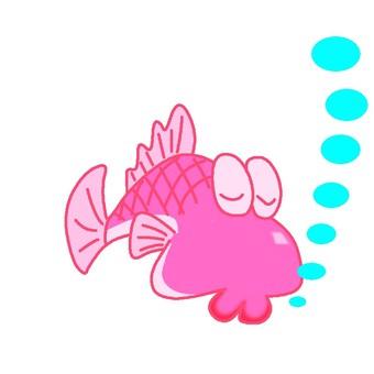 Fish 102