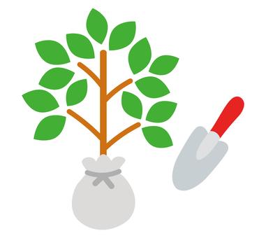 Commemorative tree planting