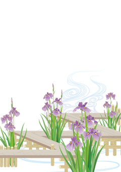 Floral iris and eight bridges _ white background _ vertical size