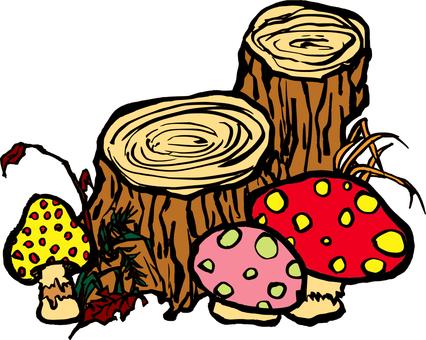 그루터기와 버섯