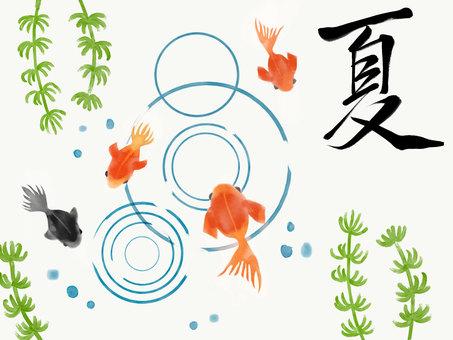 金魚 夏素材