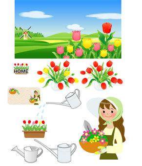 튤립의 풍경과 정원