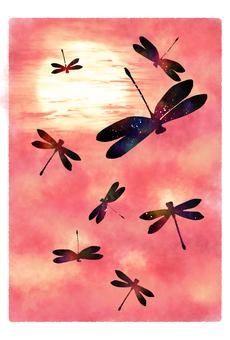 Autumn sky and Tonbo's post card Akane