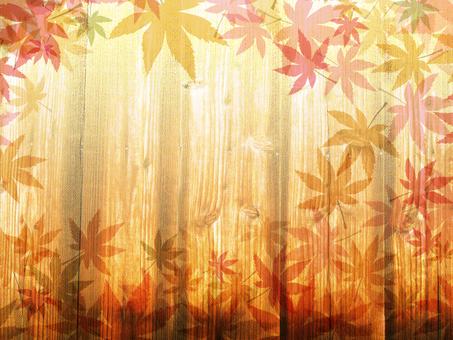Wood grain 椛 background 1610160103