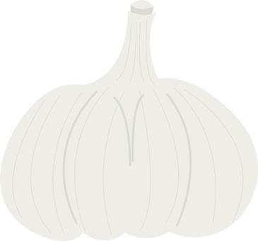 Food Series Vegetable Garlic