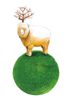 Moss of bean sheep