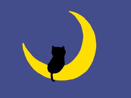 Moon cat · night sky