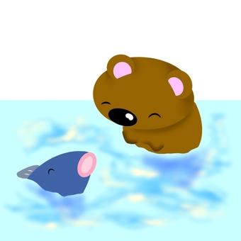 물놀이 곰