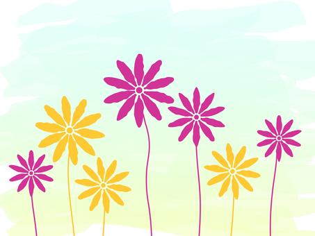 Flower _02